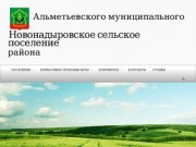 Новонадыровское сельское поселение | Альметьевского муниципального района