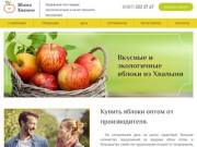 Яблоки Хвалыни - оптовая продажа яблок от производителя (Россия, Саратовская область, Хвалынск)