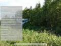 Деловой Омутнинск   Городской портал г.Омутнинска