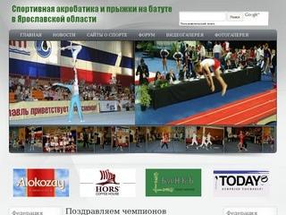 Спортивная акробатика и прыжки на батуте в Ярославской области