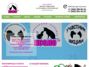 Ветеринарная клиника Ксоло