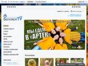 """Официальный сайт детско-юношеского пресс-центра """"Бегемот ТВ"""""""