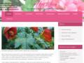 Купить комнатные цветы в Челябинске