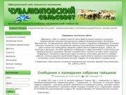Официальный сайт администрации СП Чувалкиповский сельсовет муниципального района Чишминский район РБ