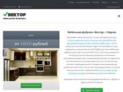 Мебельная фабрика Вектор — Кухни, шкафы — купе, прихожие на заказ Муром