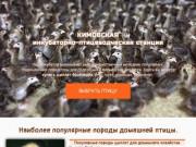 Кимовская инкубаторно-птицеводческая станция