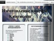 Ключ с иммобилайзером | Ленинградская область | Kluchi-kingisepp