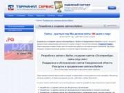 Терминал-Сервис - Разработка и создание сайтов в Ирбите
