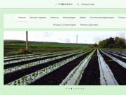 Ягодная ферма ЯГОДАР питомник Челны клубника земляника малина ежевика виноград
