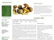 """""""Съедобные грибы"""" (Фото и описание съедобных грибов. Советы по поиску, консервированию, приготовлению грибов. Определить гриб по фото и описанию)"""
