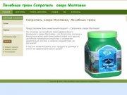 Сапропель озера Молтаево, Лечебные грязи