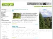 Экотуризм Белгорода. Мир лесных растений и хищных птиц (Белгородская область)
