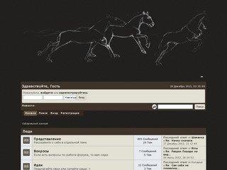 Хабаровский конный форум
