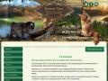 Питомник Мейн Кунов и Курильских бобтейлов Forest Sun