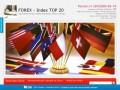 Index TOP 20 – это одновременное инвестирование в 20 лучших трейдеров FOREX.