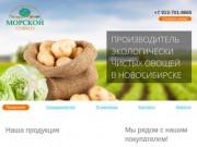Совхоз «Морской» - производитель экологически чистых овощей в новосибирске