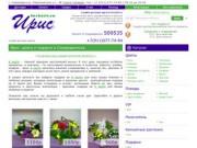 «ИРИС» - магазин цветов и подарков (Северодвинск)