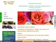 Цветы для Вашего сада в Вологде