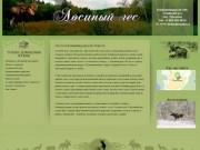 Лосиный Лес — охота в Калининградской области