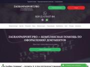 Помощь в оформлении документов для выезда зарубеж (Россия, Московская область, Москва)