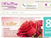 Служба доставка цветов «Юнифлора» предлагает купить розы с доставкой в Перми и Пермском крае. Заказать розы можно через интернет-магазин или по телефону +7 (342) 204‒52‒77 (Россия, Пермский край, Пермь)