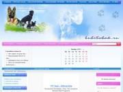 Борзинский сайт собаководов: дрессировка, лечение, форум, фотогалереи, доска объявлений