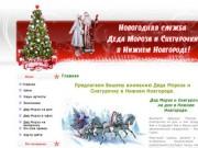 Дед Мороз и Снегурочка на дом в Нижнем Новгороде (г. Нижний Новгород, ул. Алексеевская 8а)