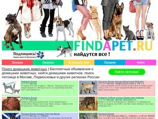 Бесплатные объявления о домашних животных, найти домашнее животное