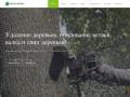 Удаление деревьев в Пушкино, Мытищи, Королев