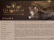 Кошки породы Мейн-кун. Питомник мейн-кунов в Тамбове, Oligarch (Олигарх)