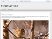 Фотообъективно (Не перестаю удивляться этому миру) сайт Aлександpа Mаpочкиа (Мордовия, Саранск)