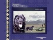 О питомнике Монгун Тайга и собаке породы тувинская овчарка