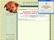 """Для любителей собачек - от """"Азалии"""" (тульский частный информационный сайт о животных)"""
