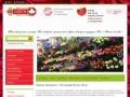 Доставка цветов недорого от флористического салона Белый Лотос