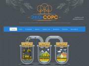 Производственный экологический мониторинг и разработка природоохранной документации