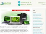 Ремонт компьютеров и ноутбуков в Сестрорецке на дому: Компьютерная помощь