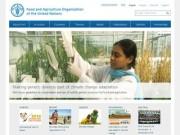 Продовольственная и сельскохозяйственная организация Объединенных Наций