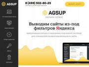 Выводим сайты из-под фильтров Яндекса, АГС и Минусинска