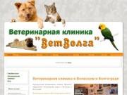 Ветеринарная клиника Волжский ветеринария ветлечебница Волгоград