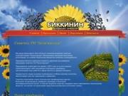 Семечки жареные Биккинин, отборные Белозерские семечки подсолнечника, купить оптом в пакетиках