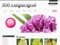 Интернет-магазин 300 гладиолусов (Россия, Алтай, Барнаул)
