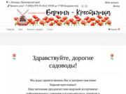 Саженцы в Приморском крае — Питомник растений