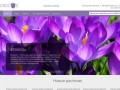 Крокус Великие Луки - цветы для вашего сада