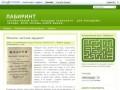 """Коллективный блог """"Лабиринт"""" (подросткам и молодежи) сайт в Рязани"""