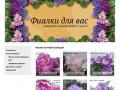 Листы комнатной фиалки с доставкой почтой в Москве и России