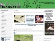 Усатые Полосатые - Общество защиты животных г.Учалы