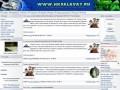 Сайт болельщиков ХК Салават Юлаев: Новости