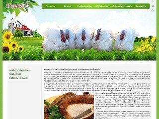 «Индейка 73» — продажа молодняка индейки от известных селекционных компаний, г. Ульяновск.