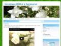 Косметика MIRRA в Мурманске (Сайт независимого партнера «MIRRA») Тел. 8 911 321 6711