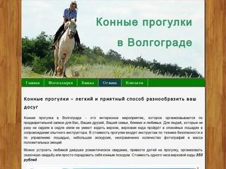 Конные прогулки в Волгограде, прокат лошедай, верховая езда - Конные прогулки в Волгограде